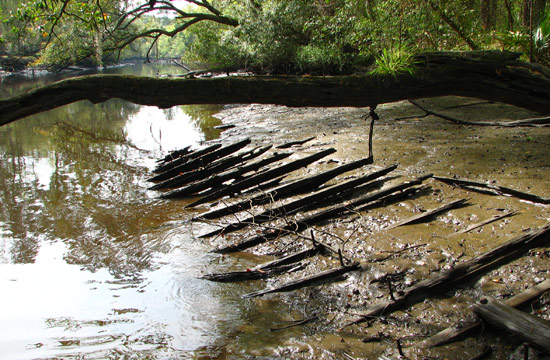 Ashley River Heritage Canoe Trail