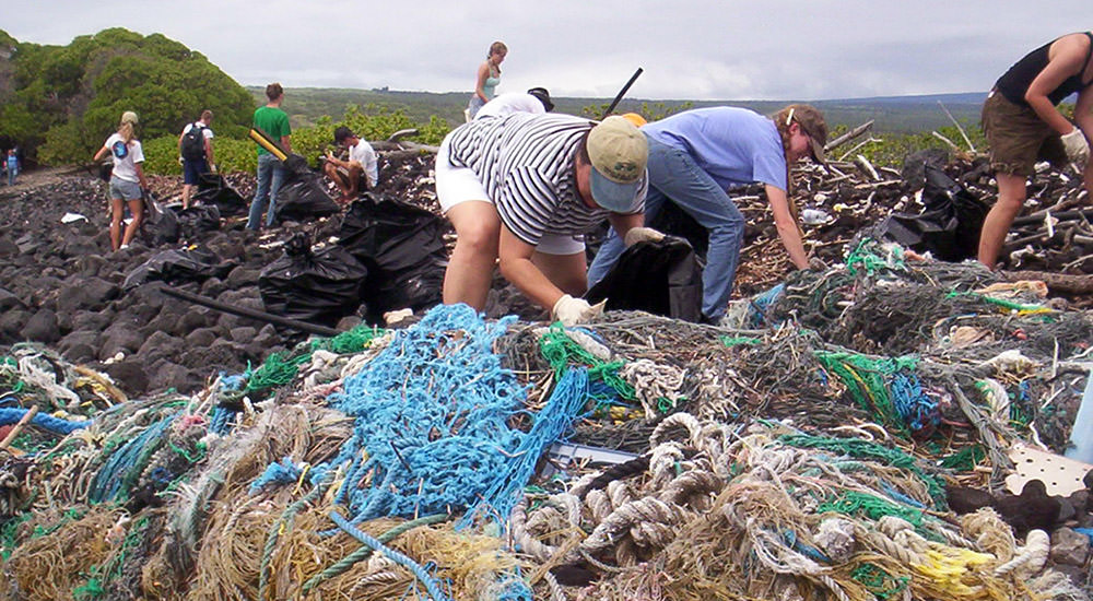 people cleaning marine debris off the shoreline