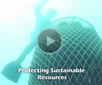 Protecting Sustainable Resources