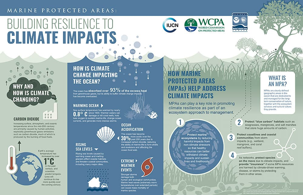 mpa building resilience to climate impacts infographic